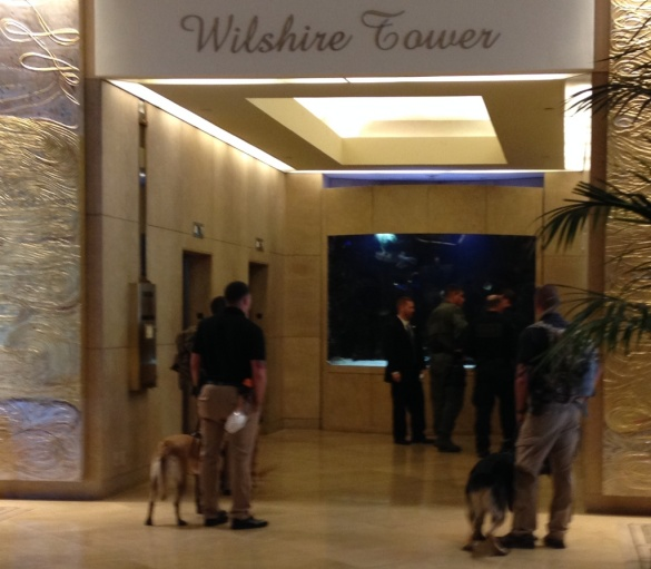 The dogs getting in to the elevators.